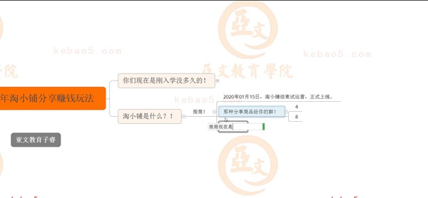 2020.03.06-2020年淘小铺分享赚钱玩法-亚文教育vip教程