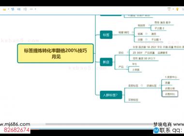 【20.1.10】标签提炼转化率翻倍200%技巧-水朵教育vip系统课
