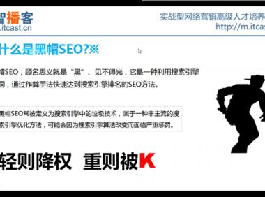 实战型网络营销 1、SEO教程 视频课程集合